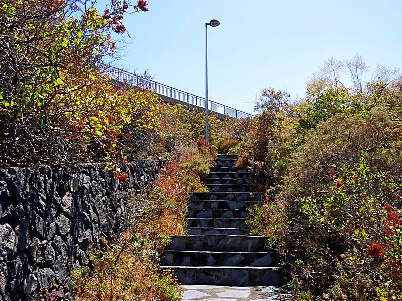 Weg-zur-Haltestelle-Cruce-Cancajos-La-Palma-rauf-Wolfgang-Ch