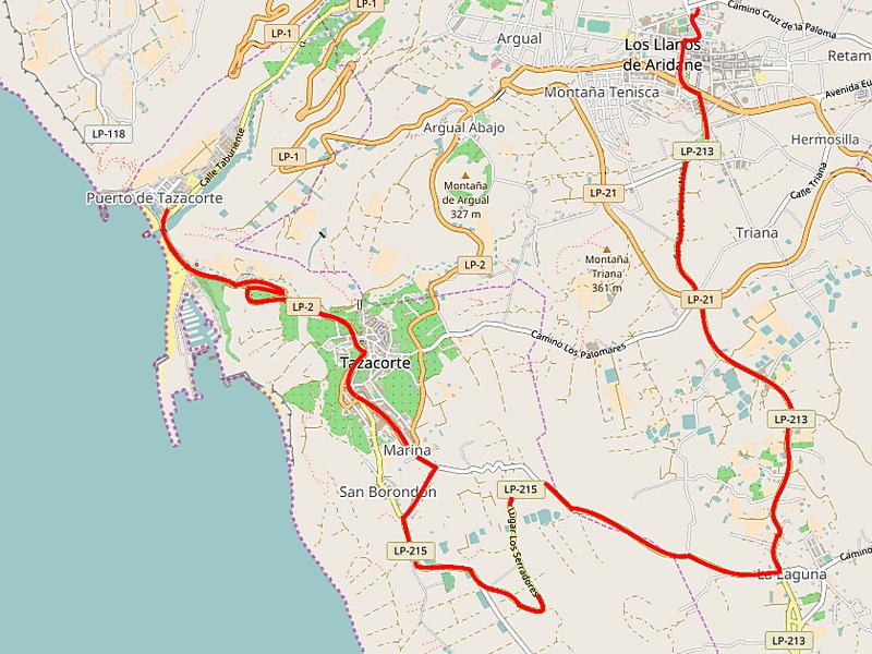 Grafik: Karte von La Palma mit eingezeichnetem Verlauf der Streckenführung der neuen Linie 209